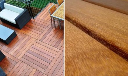 Cumaru Wood: Features and Uses