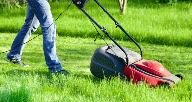 Lawn mower: types, uses and tips