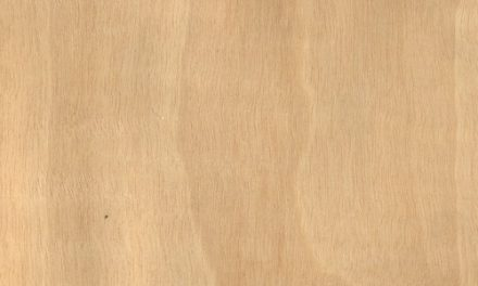 Mukali or Anigre Wood: Features and Uses