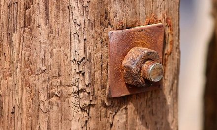 Steel screws and fasteners for wood: which one should I use?