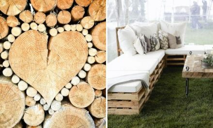 What are the cheapest woods and where to find them