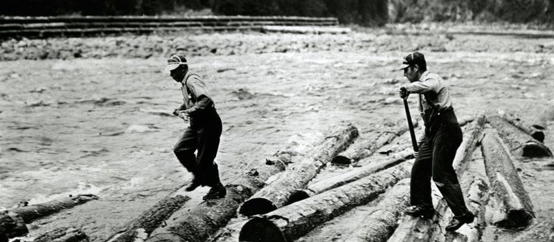 Wood that does not float in water: justification and species