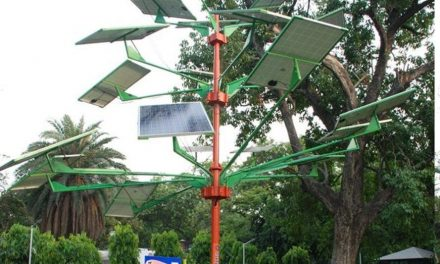 A solar tree capable of generating enough energy to light 5 houses in India