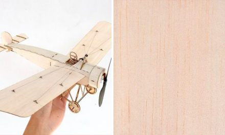 Balsa Wood: Features and Uses