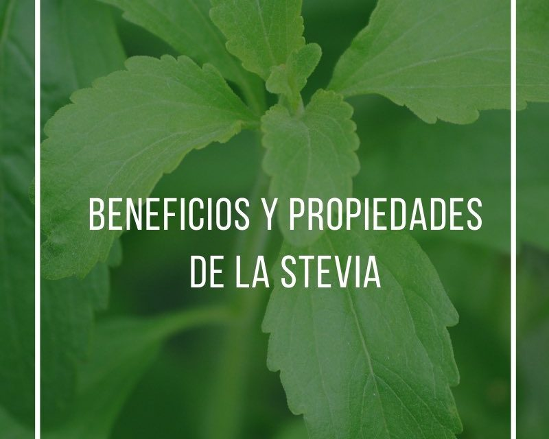 Benefits and properties of stevia
