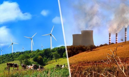 Chinese manufacturer to train unemployed Americans from coal to wind power for free