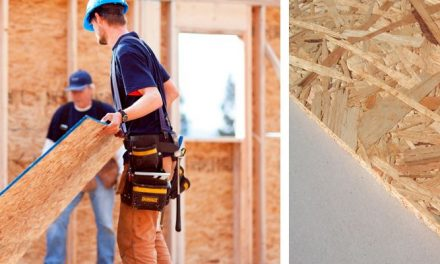 OSB Board: Definition, characteristics, types and uses