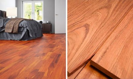 Jatoba Wood: Features and Uses