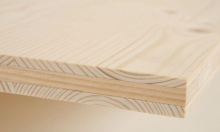Three-ply Plate: Composition, Characteristics and Uses