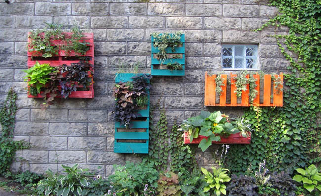 vertical gardens with pallets