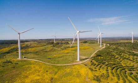 In March, 104% of Portugal's electricity consumption came from renewables