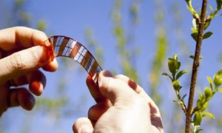 Inexpensive plastic solar cells, easy to print and with 9.12% efficiency