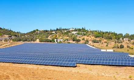 Investment boom: new world record for photovoltaic investments