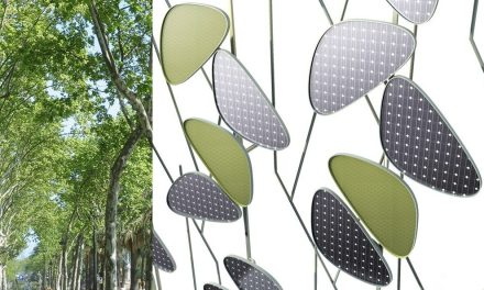 Leave the performative walls, the leaves that eat pollution and generate energy