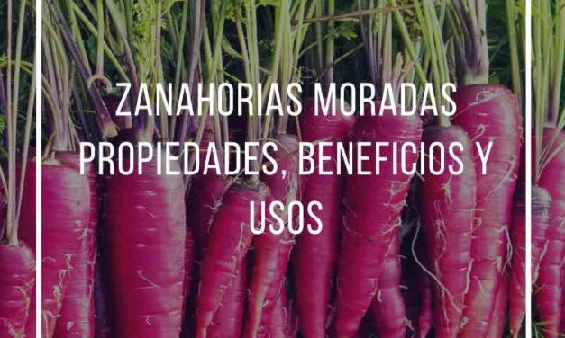 Purple carrots, properties, benefits and uses