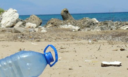 Reduce plastic in the Covid-19 pandemic