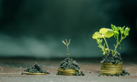 The circular economy and the bioeconomy: partners for sustainability