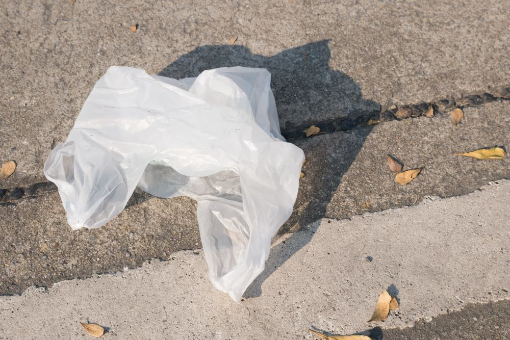 Plastic bag on the street of any city in the world.
