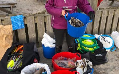 Action Nan, the 70-year-old grandmother who cleaned up waste from 52 beaches in 2018