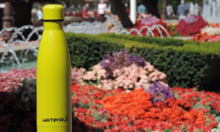 Benefits of drinking water in stainless steel bottles