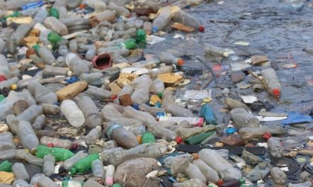 India plans to phase out single-use plastic by 2022