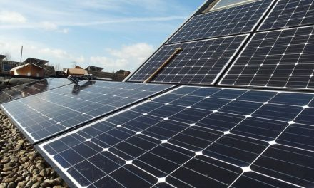 Spanish family drops off grid and feeds on solar panels