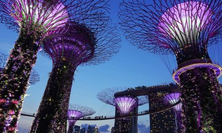 In Singapore, they generate electricity with artificial trees 50 m