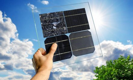 Black or blue solar panels: which is better for your home?