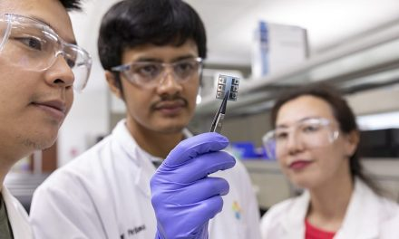 Organic solar cells gain ground, record efficiency above 17%