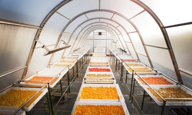 Solar greenhouse drying food, reduce waste and increase income